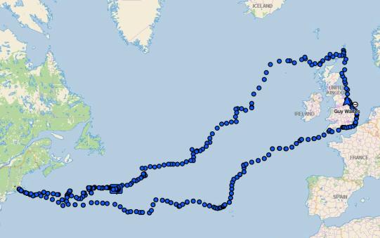 betsy tracker map
